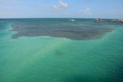 Het Gespleten Strand op Caye-Breeuwijzereiland Belize stock fotografie