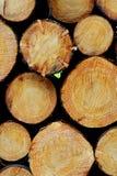 Het gestapelde hout opent het hout het programma Stock Foto's