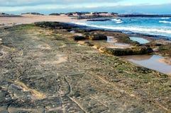 Het getijde van het strand Royalty-vrije Stock Foto's