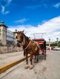 Het getrokken vervoer van Cuba Havana paard Royalty-vrije Stock Foto's