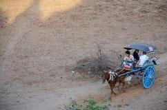 Het getrokken vervoer van het reizigersgebruik paard voor reis rond oude bagan stad Stock Afbeelding