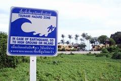 Het gevaar van Tsunamy Stock Afbeeldingen