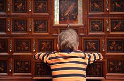 Het geval van de luxe met ingelegde dozen en jongen royalty-vrije stock foto's