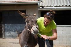 Het geven van een geneeskunde aan een koppige ezel Royalty-vrije Stock Foto