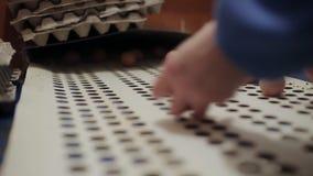 Het gevogeltearbeiders die van het kippenlandbouwbedrijf eieren sorteren bij fabriekstransportband De industriële productielijn v stock videobeelden