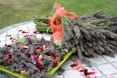 Het gewas van de lavendel Stock Foto's