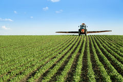 Het gewassengebied van de tractor bespuitend sojaboon Royalty-vrije Stock Foto