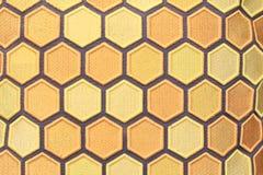 Het geweven ontwerp van de honingskam Stock Foto's