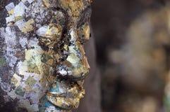 Het gezicht van Boedha dat met bladgoud wordt behandeld Stock Afbeeldingen