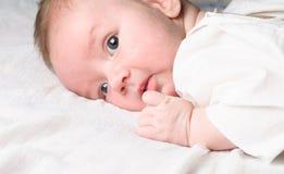 Het gezicht van de baby Stock Foto