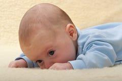 Het gezicht van de baby op schapenleer Stock Afbeelding