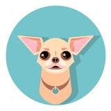 het gezicht van de chihuahuahond - vectorillustratie Stock Afbeelding