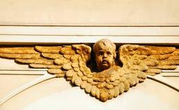 Het gezicht van de engel Royalty-vrije Stock Afbeeldingen
