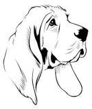 Het gezicht van de hond vector illustratie