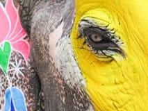 Het Gezicht van de kleurrijke Olifant royalty-vrije stock afbeelding