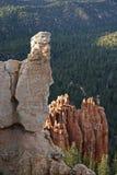 Het gezicht van de rots Stock Foto