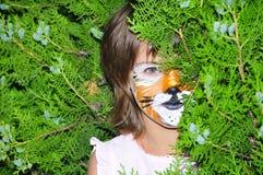 Het gezicht van de tijger het schilderen royalty-vrije stock foto's