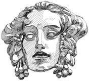 Het gezicht van de vrouw met olijftakken Stock Afbeelding