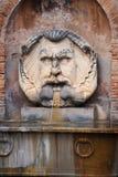 Het gezicht van Mythologic Stock Foto's