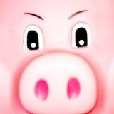 Het gezicht van Piggy Stock Foto's