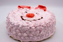 Het gezicht van het roze cakevarken royalty-vrije stock foto's