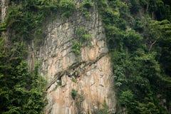 Het Gezoem van de kalksteenklip royalty-vrije stock foto's