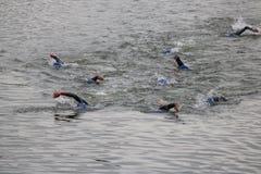 Het gezonde de oefening van de triatlon triathlete sport zwemmen Royalty-vrije Stock Afbeelding