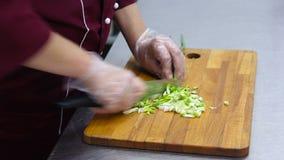 Het gezonde eten, het koken, vegetarisch voedsel, keukengerei en mensenconcept - sluit omhoog van vrouw die groene ui hakken met stock video