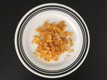 Het gezonde voedsel is de essentie van het goede leven royalty-vrije stock foto's