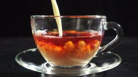 Het gieten van een melk in transparante kop met hete thee, langzame motie stock videobeelden