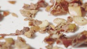 Het gieten van gemengd kruid op de plaat, macroschot stock footage