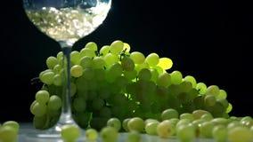 Het gieten van witte wijn in glas tegen de bos van groene druiven Wijnbereidingsconcept Super langzaam motieschot stock video
