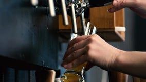 Het gietende bier van het vat van de barman stock footage