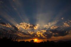 Het glanzen van de zon Stock Fotografie
