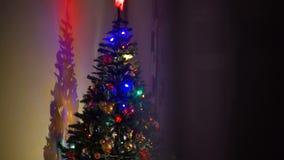 Het glanzen van Kerstmisboom in de avond stock video