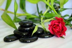 Het glanzende zwarte vest van de kiezelstenen zen houding met bamboebladeren, een roze bloem en bloemblaadjes stock afbeeldingen