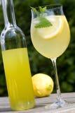 Het glas van de cocktail en een fles Stock Foto