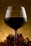 Het Glas van de wijn met Druiven Royalty-vrije Stock Foto