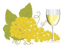 Het glas van de wijn met een bos van druiven Royalty-vrije Stock Afbeelding