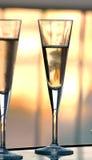 Het glas van de wijn met wijn stock fotografie