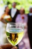 Het glas van de Wijn van de bezinning Stock Afbeeldingen