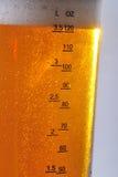 Het glas van het bier Stock Foto's