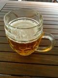 Het glas van het bier Royalty-vrije Stock Afbeeldingen