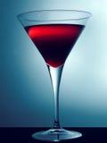 Het Glas van martini Royalty-vrije Stock Foto