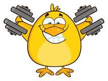 Het glimlachen Gele Chick Cartoon Character Training With Domoren Stock Foto's