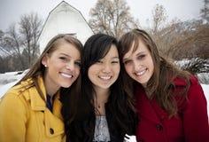 Het glimlachen het Jonge Portret van Vrouwen stock fotografie