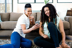 Het glimlachen lesbische paarzitting op deken en het bekijken hun mobiele telefoon Stock Foto's