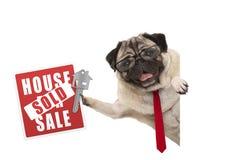 Het glimlachen van bedrijfspug hond met glazen en band, die rood huis steunen verkocht teken en sleutel stock foto