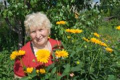 Het glimlachen van de grootmoeder stock afbeeldingen
