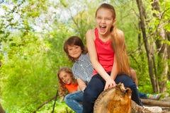 Het glimlachen van jonge geitjes die op login het de zomerpark zitten Stock Afbeeldingen